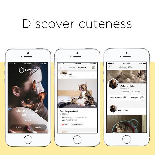 Украинский  стартап Petcube выпустил  мобильное приложение