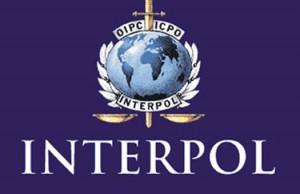 Турцию обвиняют в злоупотреблении Интерполом