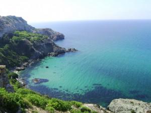 В Крыму создадут монополию на виноматериалы