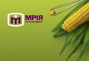 Fitch понизило рейтинг украинского «Мрия Агрохолдинг»
