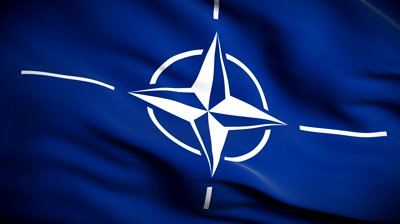 Украина выполнила 307 требований НАТО, - Климпуш-Цинцадзе