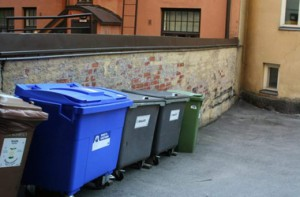 В Ровно зампредседателя кинули в мусорник. Видео