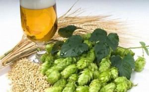 «Оболонь» призывает ввести запрет на импорт российского пива