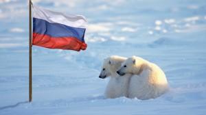 В НАТО обеспокоены активностью РФ в Арктике