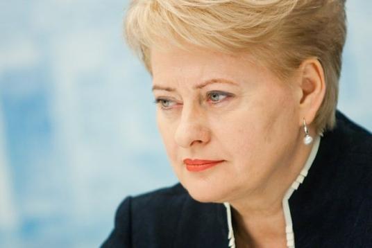 Зеленский обсудил с Грибаускайте евроинтеграцию