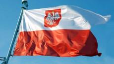 Польский чек на услуги дизайна на 30-40% больше украинского