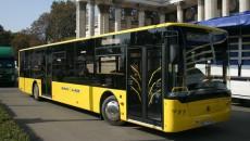 ЛАЗ поставит в Египет 300 автобусов