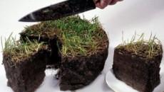 Низкая урожайность в Украине из-за моратория на продажу земли, - Всемирный банк