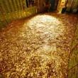 На Кавказе нашли залежи золота