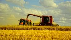 Kernel продает долю в зерновом терминале РФ