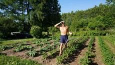 Сельхозпроизводство сократилось на 5,3%
