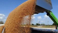 Украина готова нарастить продажу зерновых Турции