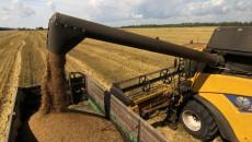 Аграрии намолотили 43,6 млн тонн зерновых
