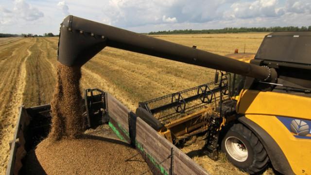 Рекордные урожаи прогибают цену на зерно