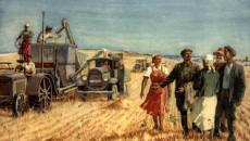 До 1 января 2017 года продлен мораторий на продажу сельхозземель
