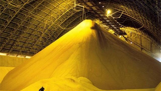 Китайцы хотят строить в Украине зерноперерабатывающие заводы