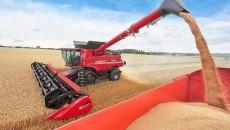 Украина экспортировала сельхозпродукции на $13 млрд