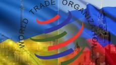 Россия не сможет оспорить в ВТО жалобу Украины