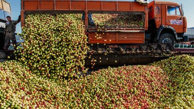 Производство соков рухнуло на 35%