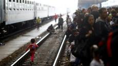 Трапм направил армий на встречу мигрантам из Мексики
