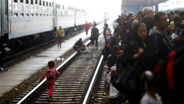 Украину наводнили мигранты-нелегалы