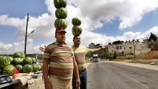 Турция лоббирует свое сельское хозяйство как условие ЗСТ с Украиной