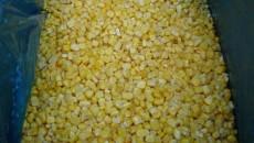 Экспортеры выбрали квоту на поставку кукурузы в ЕС
