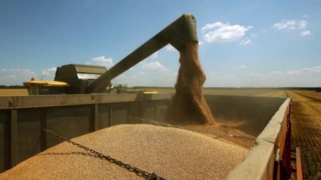 Экспорт зерновых достиг 38 млн тонн