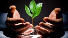 Инвествливания в агросектор выросли до 11 млрд грн