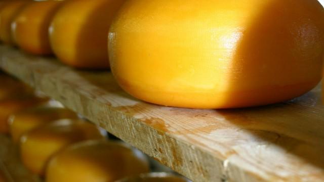Экспорт сыров упал почти в два раза