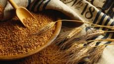 Кувейт заинтересовался украинским зерном