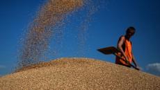 На Новоодесском элеваторе запустили новый зерновой терминал