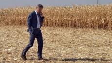 Агрочиновники договорились с трейдерами зерна