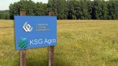 В KSG Agro решили заняться мясом