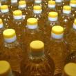 Объем производства подсолнечного масла вырос на 51%