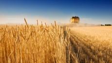 Аграриям увеличат компенсации за сельхозтехнику