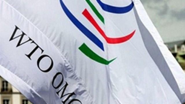 В ВТО начали анализировать украинскую экономику