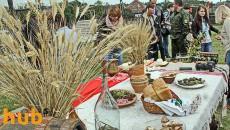 Украина засеет 26,5 млн га под урожай 2016 года