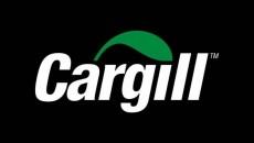 Cargill пока еще - не инвестор Херсонского порта