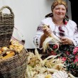 В Украине аграрии начали уборку кукурузы