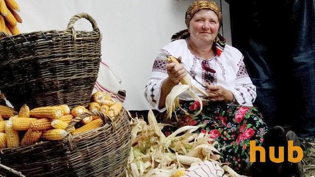 Украинская кукуруза вытесняет американскую