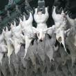 Птицеводы нарастили долю в экспорте мяса в полтора раза