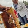 Украина уже исчерпала квоту ЕС на мед