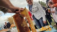 В Украине стали производить меньше меда
