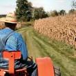 Кабмин утвердил порядок предоставления господдержки фермерам