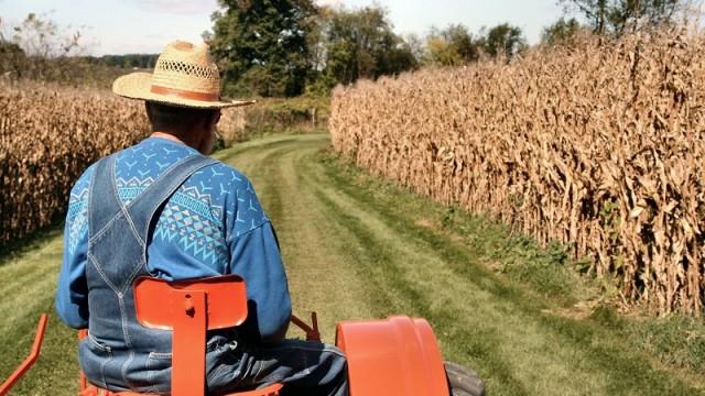 Фермерам обещают поддержку сельхозтехникой