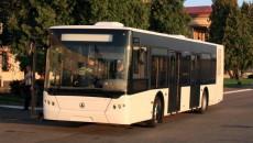 ЛАЗ хочет строить автобусы в Грузии