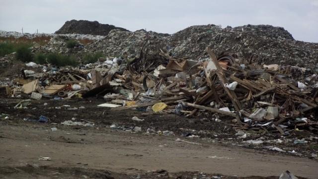 В Николаеве построят завод по переработке мусора