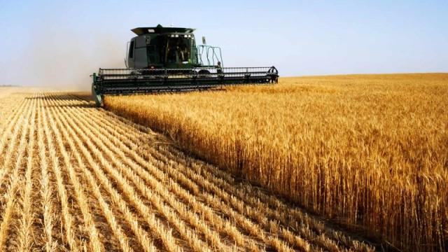 МинАПК утвердило стратегию развития сельского хозяйства на пять лет
