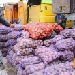 Украина увеличила экспорт картофеля